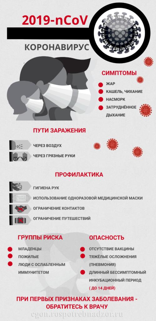 Приложение Инфографический материал (33508255 v1)